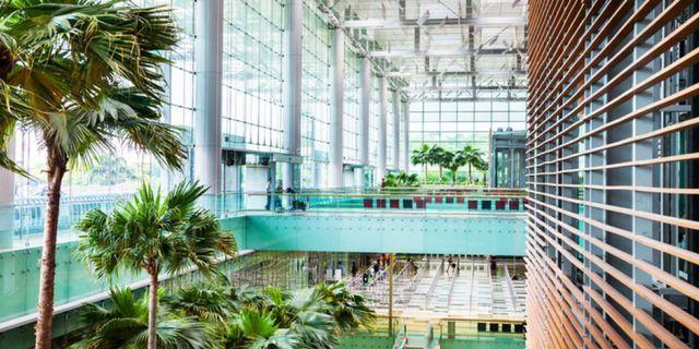 Terminal tre på Singapore Changi. Istock