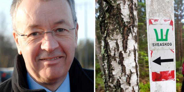 Per-Olof Wedin.