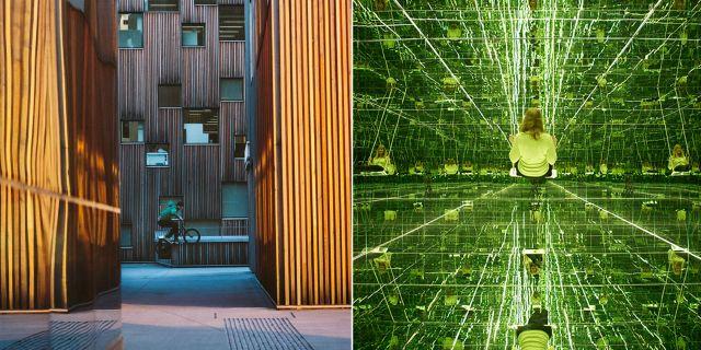 Bildmuseet hyllas för sina utställningar av modern konst, fotografi, design och arkitektur. Umeå Universitet / Bildmuseet