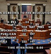 Tio republikaner röstade mot Trump. TT NYHETSBYRÅN