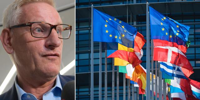 Carl Bildt (M). TT