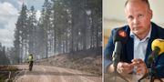 Skogsbrand/Morgan Johansson (S). TT