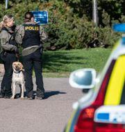 Polisen söker med hund på Tågvirkesvägen i Arlöv på måndagseftermiddagen. Polisen utreder fortfarande händelsen i Arlöv i helgen som ett dubbelmord. Johan Nilsson/TT / TT NYHETSBYRÅN