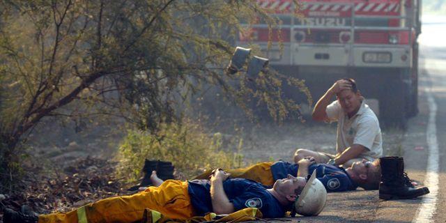 Australiska brandmän. Arkivbild. ROB GRIFFITH / TT NYHETSBYRÅN