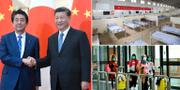 Xi Jinping och  Shinzo Abe / arkivbilder  TT