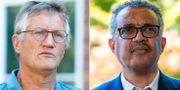 Anders Tegnell och WHO-chefen Tedros Adhanom Ghebreyesus. TT