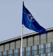 Natoflaggan. Olivier Matthys / TT NYHETSBYRÅN