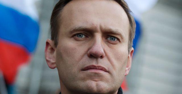 Navalnyj. Arkiv. Pavel Golovkin / TT NYHETSBYRÅN