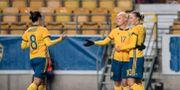 Arkivbild.  Björn Larsson Rosvall/TT / TT NYHETSBYRÅN
