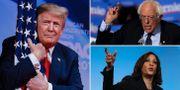Donald Trump/Bernie Sanders/Kamala Harris. TT
