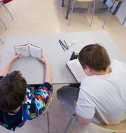 Elever i fjärde klass har tyst lässtund i bänkarna under en lektion i ämnet svenska. Arkivbild från 2013.  FREDRIK SANDBERG / TT / TT NYHETSBYRÅN
