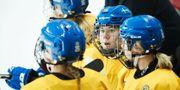 Sveriges Lisa Johansson pratar med lagkamraterna på bänken under träningsmatchen i ishockey mellan Korea och Sverige. Andreas Hillergren / TT NYHETSBYRÅN