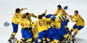 De svenska spelarna jublar efter finalen JOE KLAMAR / AFP
