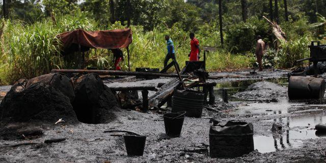 Oljeskador i Nigerdeltat. Sunday Alamba / TT NYHETSBYRÅN/ NTB Scanpix