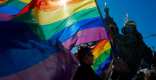 Regnbågsflaggan under en manifestation i St Petersburg. Arkvbild. Dmitry Lovetsky / AP