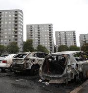 Utbrända bilvrak i Frölunda i augusti. Adam Ihse/TT / TT NYHETSBYRÅN