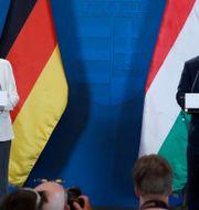 Förbundskansler Angela Merkel och Ungerns premiärminister Viktor Orban. Arkivbild. BERNADETT SZABO / TT NYHETSBYRÅN