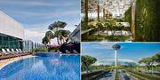 Takpool och trädgårdar är bara några av alla attraktioner på Singapore Changi International Airport, som har utsetts till årets bästa flygplats för femte året i rad. Singapore Changi