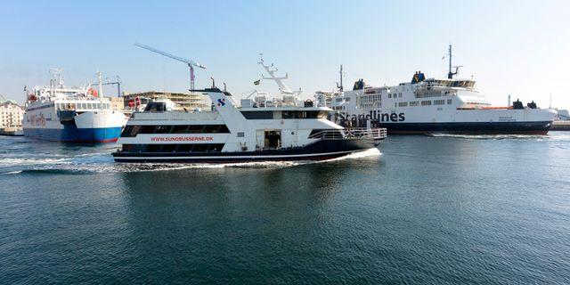 Färjebåtar i Helsingborgs hamn. Johan Nilsson / TT / TT NYHETSBYRÅN