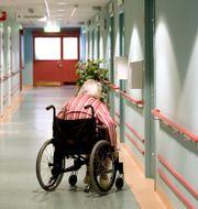 Illustrationsbild. Kvinna i rullstoll på äldreboende i Vingåker. PONTUS LUNDAHL / TT / / TT NYHETSBYRÅN
