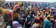 Kvinnor i lägret Dikwa. STRINGER / AFP