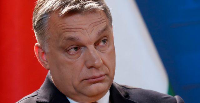 Viktor Orbán.  Bernadett Szabo / TT NYHETSBYRÅN