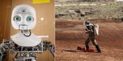 Robot / Mars Desert Center i Utah.  TT