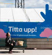 Optimism på Stockholmsbörsen. ALI LORESTANI / TT / TT NYHETSBYRÅN