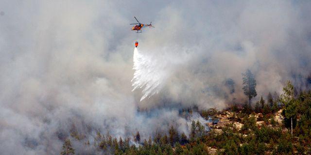 Bild från den stora skogsbranden i Västmanland 2014. JOCKE BERGLUND / TT / TT NYHETSBYRÅN
