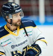 Schira i HV71. Anders Bjurö/TT / TT NYHETSBYRÅN