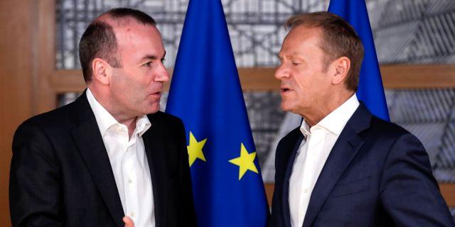 Manfred Weber och Donald Tusk.  Olivier Hoslet / TT NYHETSBYRÅN