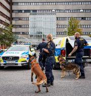 Från polisinsatsen i Lund TT / TT NYHETSBYRÅN