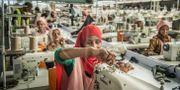 Illustrationsbild: H&M är en annan svenskgrundad jätte som har produktion i Etiopien.  Yvonne Åsell/SvD/TT / TT NYHETSBYRÅN