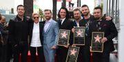 Ellen DeGeneres, Lance Bass, JC Chasez, Joey Fatone, Justin Timberlake och Chris Kirkpatrick. Jordan Strauss / TT NYHETSBYRÅN
