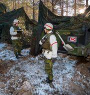 NATO-övning i Norge. Junge, Heiko / TT NYHETSBYRÅN