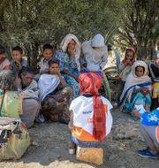 Människor från Tigray vittnar om situationen för hjälparbetare.  Fitalew Bahiru / TT NYHETSBYRÅN