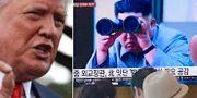Donald Trump/Kim Jong-Un. TT