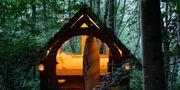 Den Sagan om ringen-inspirerade stugan i sydvästra England nås på tre timmar med tåg från London. Brook House Hobbit Hut
