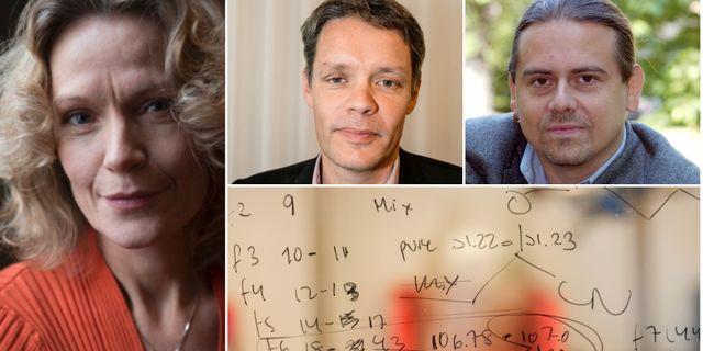 Åsa Wikforss, Ulf Danielsson och Christer Sturmark Stockholms universitet, TT
