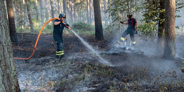 Räddningstjänsten släcker en av flera bränder i skogen utanför Åhus i juli 2018.  Johan Nilsson/TT / TT NYHETSBYRÅN