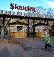 Skansen. Janerik Henriksson/TT / TT NYHETSBYRÅN