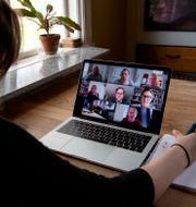 Google Meet. Jessica Gow/TT / TT NYHETSBYRÅN