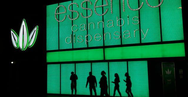Illustrationsbild. Cannabisförsäljaren Essence i Las Vegas.  John Locher / TT NYHETSBYRÅN