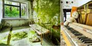 Björkarna växer rakt genom golven i bostadshusen, som är fulla av tomma sängar och dammiga pianon. Istock