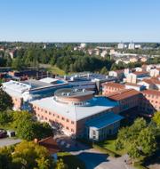 Coronatest/Linnéuniversitetet i Växjö.  TT.