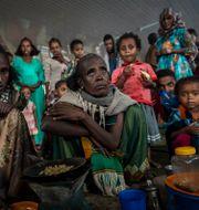 En grupp kvinnor i Tigray. Ben Curtis / TT NYHETSBYRÅN