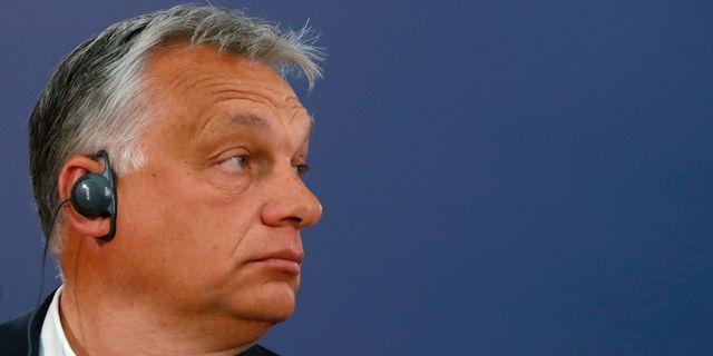 Viktor Orbán. Darko Vojinovic / TT NYHETSBYRÅN