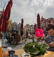 Vardagen återvänder till Nederländerna efter att nedstängningen hävts. Peter Dejong / TT NYHETSBYRÅN