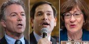 Rand Paul, Marco Rubio och Susan Collins. TT