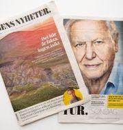 Dagens Nyheters specialnummer. Henrik Montgomery/TT / TT NYHETSBYRÅN